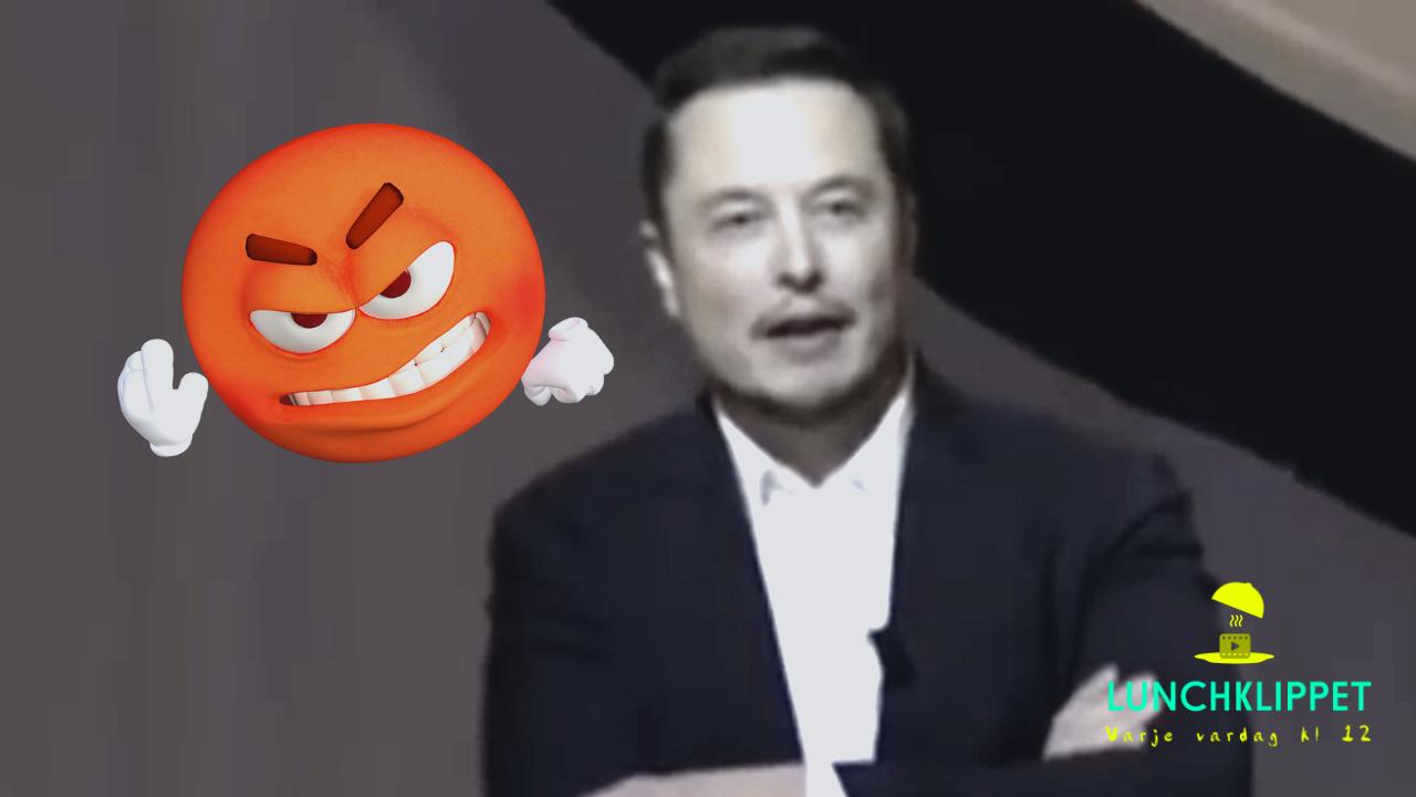 Elon Musk blir arg!